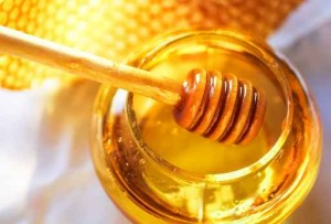 Honey dipper with bee honeycomb